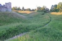 http://henriikkakontimo.com/files/gimgs/th-62_grass-4.jpg